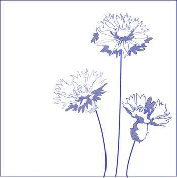 blue cornflower with text place on white background - Free vector #127395