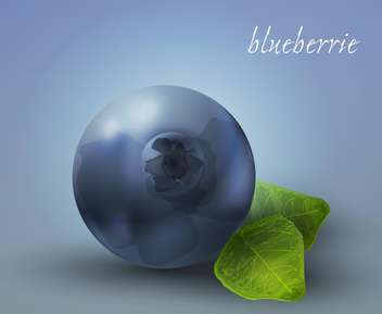 ripe blueberry vector illustration - vector gratuit(e) #130485