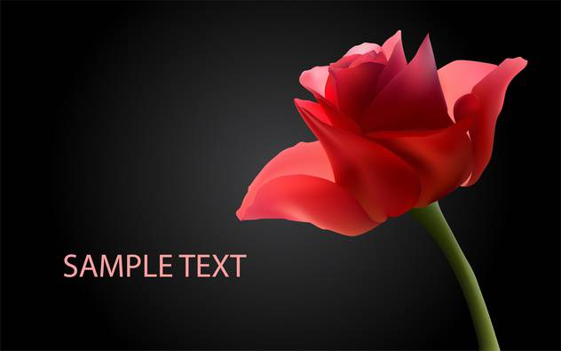 vector background with red roses - Free vector #134825