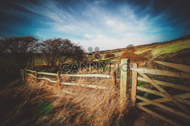 Landscape with wooden fence in field - Free image #136205