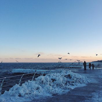 People feed seagulls on seafront - бесплатный image #136375