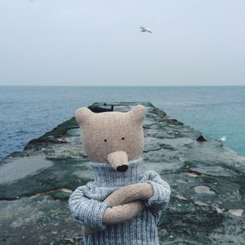 Toy bear on sea pier - Free image #136425