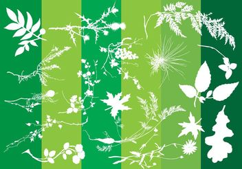 Plants Silhouettes Nature Graphics - Free vector #145495