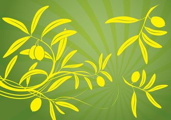 Olive Branch Vector - Free vector #145535