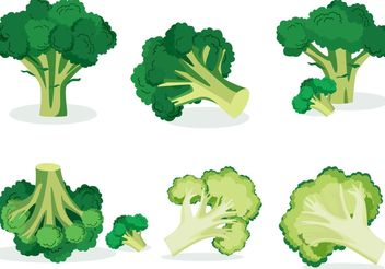 Broccoli Isolated Vectors - vector gratuit #145585