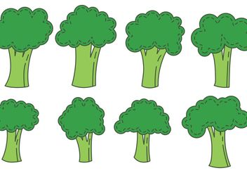 Broccoli Isolated Vectors - vector gratuit #145605