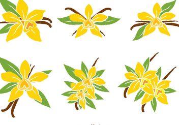 Vanilla Flower Vectors - Free vector #146155