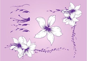 Beautiful Purple Flowers - vector gratuit #146165