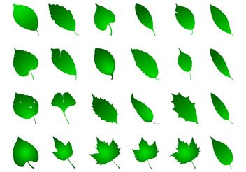 Green Leaves Graphics Set - vector gratuit #146475