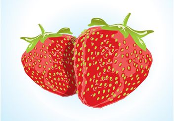 Strawberry Vector - vector gratuit #147865