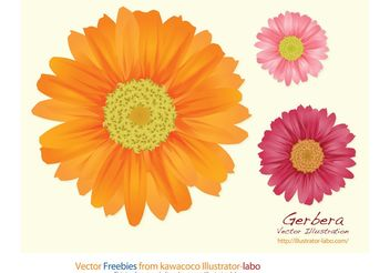 Summer Flowers - vector gratuit #152655