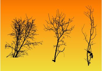 Tree Branches - vector gratuit #152925