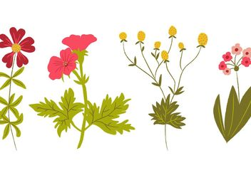 Hand Drawn Wildflowers Vectors - Free vector #156615