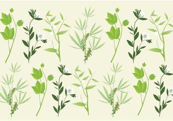 Botany Plants Vectors - Free vector #156945
