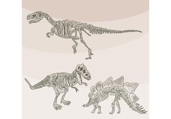 Dinosaur Bones Vectors - Free vector #157275