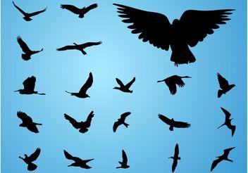 Vector Birds - Free vector #157655