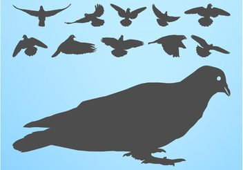 Pigeons Silhouettes - Free vector #157755