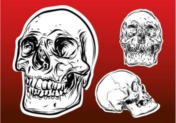 Skulls - Kostenloses vector #158675