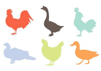 Variety Silhouettes of Roosters and Other Poultries - Free vector #162575