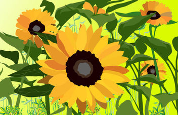 Flouring Plants Background with Sunflowers - vector gratuit #164285