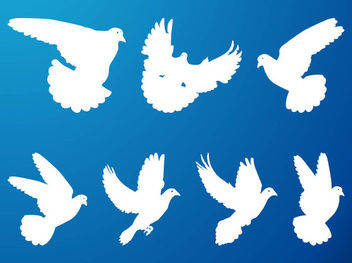Silhouette Flying Pigeon Pack - Free vector #173095