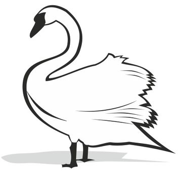 Black and White Swan Silhouette - vector gratuit(e) #173195