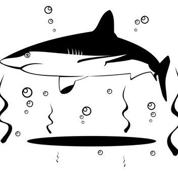 Shark vector - Free vector #173555
