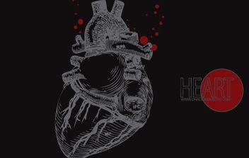 Human Heart Vector - Free vector #174475