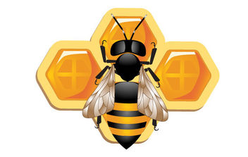 3D bee and Honeycomb - Free vector #175605