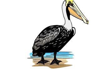 Pelican clip art - Free vector #176775