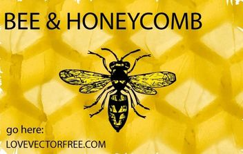 Bee and Honeycomb - vector gratuit #178175