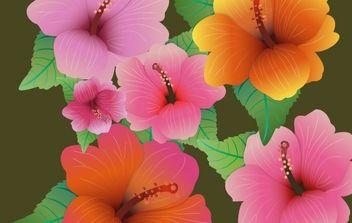 HIBISCUS FLOWERS - vector gratuit #179675