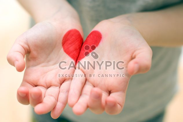 Heart in the hands of a child - Free image #182675
