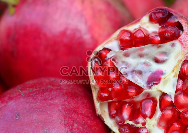 Pomegranate - Free image #182785