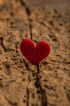 Red heart on wood - image gratuit #182985