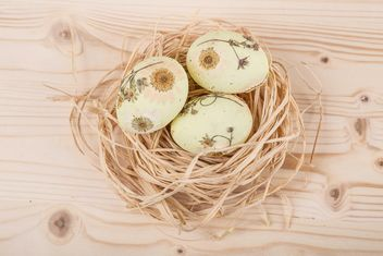 Easter eggs in nest - Free image #183105