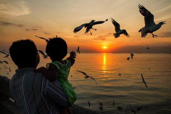 People feeding seagulls at sunset - image #183925 gratis