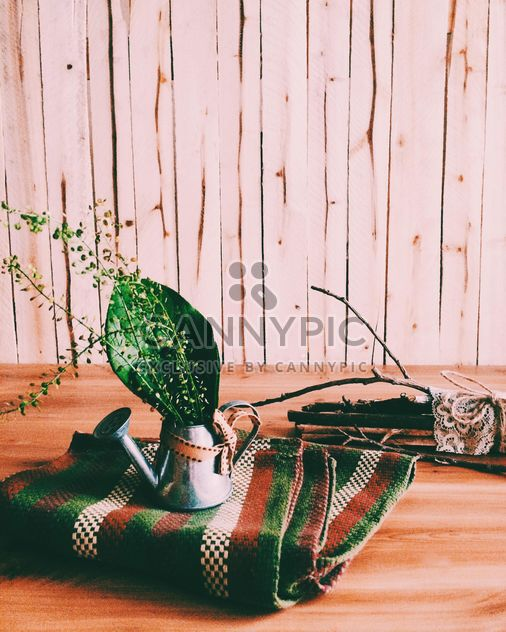 Green leaves in watering can on checkered plaid - Free image #184135