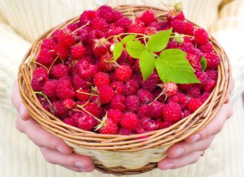 basket of raspberries - image #185885 gratis