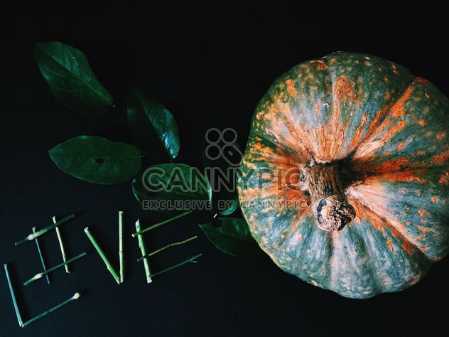 Pumpkin, twig with green leaves and word love - Free image #186225