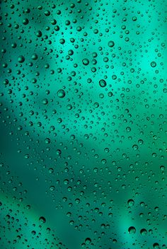 Water drops on green background - Free image #187665