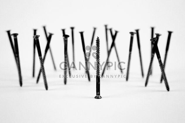 Parafusos, isolados no fundo branco - Free image #187695