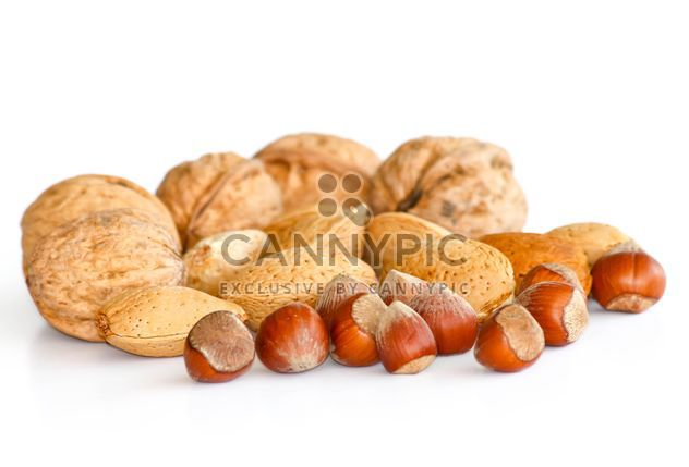 Nuts in Shells isolated on white - Free image #187845