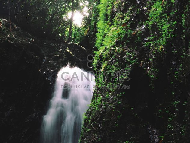 Bangpae Waterfall Phuket - Free image #197925