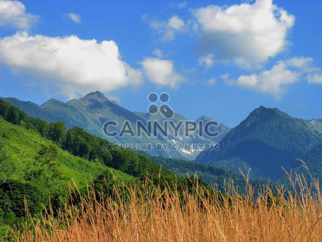 Горы Карпаты - бесплатный image #198175