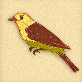 Bird 50 - Free vector #203955