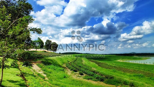 garden,mountain,cloud,sky,country,tree,green,natural,nature - Free image #205075