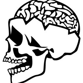 Skull With Brain Vector - Free vector #207035