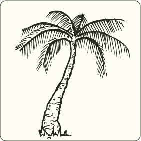 Palm Tree 1 - vector gratuit #208365