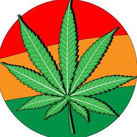 Marijuana Leafs Vector - Free vector #213025